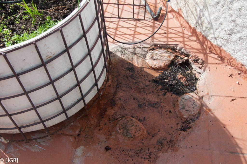 Acumulación de tierra y agua apoyo jardinera.. Rehabilitación, Cubierta, Terraza, Humedades